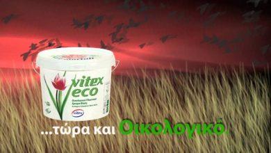 Photo of Τα προϊόντα της Vitex αναδείχθηκαν από τους Έλληνες καταναλωτές ως DIY Προϊόντα της Χρονιάς 2020